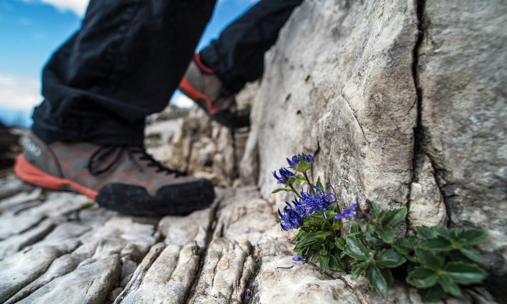 Conquer Mount Sciliar and Sasso Piatto during your hiking vacation